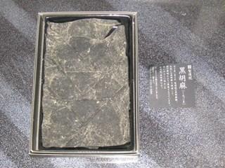 20070310-1-2.jpg