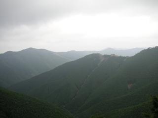 20070723-1-1.jpg